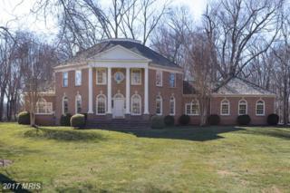 19511 Barnwood Court, Leesburg, VA 20175 (#LO9683803) :: LoCoMusings