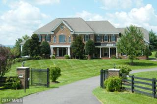 37922 Wright Farm Court, Purcellville, VA 20132 (#LO9745419) :: LoCoMusings