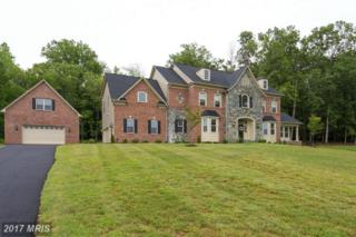 20480 Stone Fox Court, Leesburg, VA 20175 (#LO9764478) :: Pearson Smith Realty