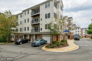 20804 Noble Terrace #205, Sterling, VA 20165 (#LO9789368) :: Pearson Smith Realty