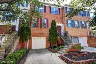 43769 Clemens Terrace, Ashburn, VA 20147 (#LO9796703) :: LoCoMusings