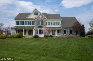 37974 Highland Farm Place, Purcellville, VA 20132 (#LO9801400) :: LoCoMusings