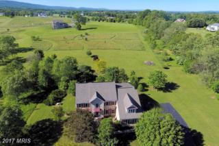 14695 Grange Drive, Purcellville, VA 20132 (#LO9837105) :: Pearson Smith Realty