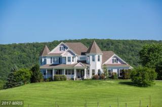 14868 Cider Mill Road, Purcellville, VA 20132 (#LO9880476) :: Pearson Smith Realty