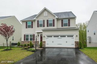26085 Grazing Court, Aldie, VA 20105 (#LO9927251) :: Pearson Smith Realty
