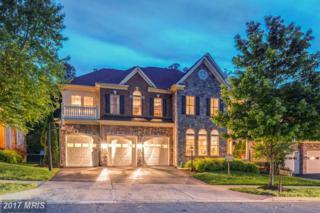 18771 Thomas Lee Way, Leesburg, VA 20176 (#LO9941215) :: Wicker Homes Group