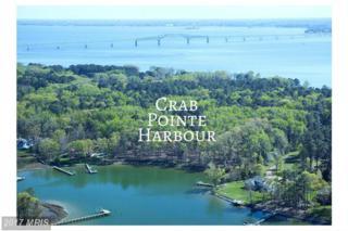 Crab Point Road, White Stone, VA 22578 (#LV9657784) :: LoCoMusings