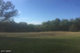 0 Repton Mill Road, Aroda, VA 22709 (#MA9785563) :: LoCoMusings