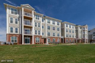 3911 Doc Berlin Drive #34, Silver Spring, MD 20906 (#MC9693734) :: Pearson Smith Realty