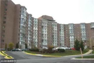 3200 Leisure World Boulevard #308, Silver Spring, MD 20906 (#MC9726693) :: Pearson Smith Realty