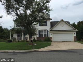 20000 Yellow Leaf Terrace, Germantown, MD 20876 (#MC9756326) :: Pearson Smith Realty