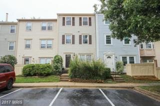 20107 Locustdale Drive #301, Germantown, MD 20876 (#MC9777775) :: Pearson Smith Realty