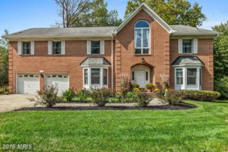 13708 Bridgewater Drive, Silver Spring, MD 20904 (#MC9782263) :: Pearson Smith Realty