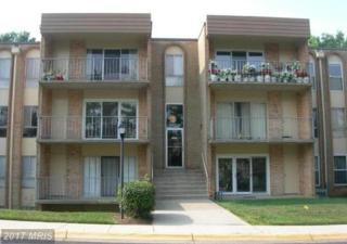 11923 Parklawn Drive #304, Rockville, MD 20852 (#MC9801778) :: LoCoMusings