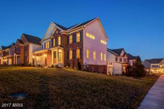 13411 Windy Meadow Lane, Silver Spring, MD 20906 (#MC9803893) :: Pearson Smith Realty