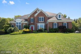 1410 Meadowsweet Drive, Sandy Spring, MD 20860 (#MC9811340) :: Pearson Smith Realty