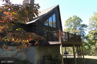 1293 Cottonwood Drive, Keyser, WV 26726 (#MI9785934) :: LoCoMusings
