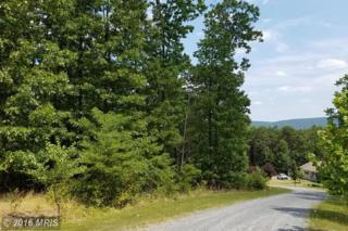 11 Husk Trail, Berkeley Springs, WV 25411 (#MO8305101) :: Pearson Smith Realty