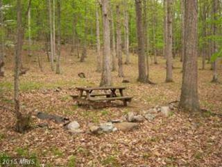 Rouse Mt. Road, Great Cacapon, WV 25422 (#MO8347022) :: Pearson Smith Realty