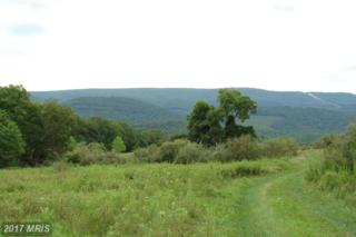 19 Harnest Hills S/D, Great Cacapon, WV 25422 (#MO8716150) :: Pearson Smith Realty
