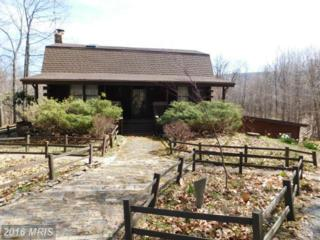 158 Heritage Lane, Berkeley Springs, WV 25411 (#MO9613032) :: Pearson Smith Realty