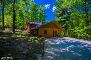 1388 Sideling Mountain Trial, Great Cacapon, WV 25422 (#MO9921363) :: Pearson Smith Realty
