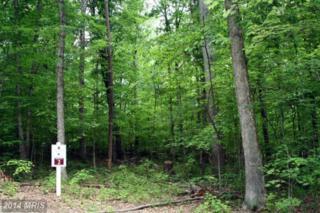 Glenwood Lane, Orange, VA 22960 (#OR8273987) :: Pearson Smith Realty