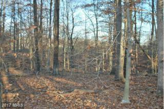 Pine Stake Road, Rhoadesville, VA 22542 (#OR9544905) :: LoCoMusings