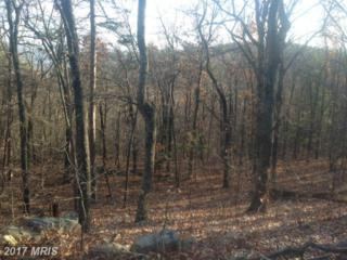 Panorama View Dr., Stanley, VA 22851 (#PA8507864) :: Pearson Smith Realty