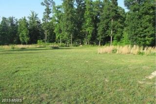 Nature Lane, Shenandoah, VA 22849 (#PA8530368) :: Pearson Smith Realty