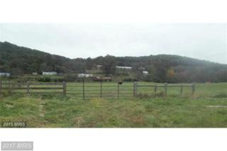 0 Ida Road, Stanley, VA 22851 (#PA9806095) :: Pearson Smith Realty