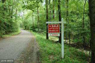 Cactus Hill Road, Accokeek, MD 20607 (#PG8640485) :: Pearson Smith Realty