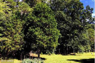 Accokeek Road, Brandywine, MD 20613 (#PG9738656) :: Pearson Smith Realty