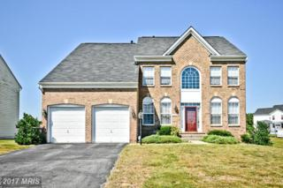 14001 Owings Avenue, Brandywine, MD 20613 (#PG9748722) :: Pearson Smith Realty