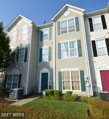 16511 Enders Terrace, Bowie, MD 20716 (#PG9760639) :: Pearson Smith Realty