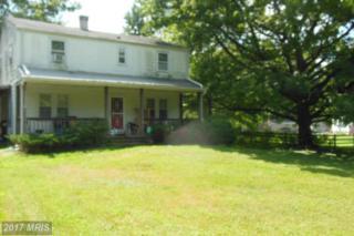 5221 Cochran Road, Beltsville, MD 20705 (#PG9781468) :: LoCoMusings