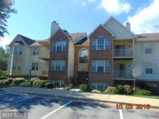 2010 Alice Avenue #101, Oxon Hill, MD 20745 (#PG9809625) :: LoCoMusings