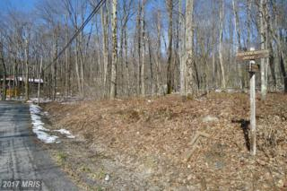 LOTS 38-40 Rhododendron Drive, Terra Alta, WV 26764 (#PR9604604) :: Pearson Smith Realty