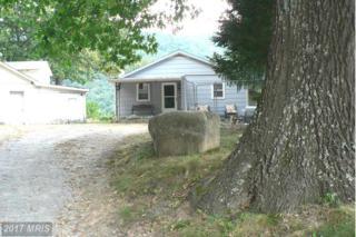 52 Briery Gap Road, Riverton, WV 26814 (#PT9775705) :: Pearson Smith Realty