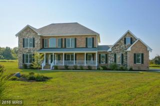 133 Browning Lane, Centreville, MD 21617 (#QA9761290) :: Pearson Smith Realty