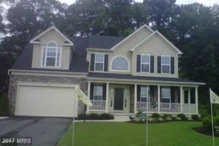 132-EAST Brook Drive, Centreville, MD 21617 (#QA9784593) :: Pearson Smith Realty
