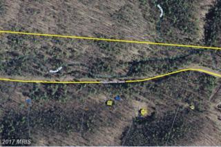 0 Yankeetown Road, Fulks Run, VA 22830 (#RO8502276) :: LoCoMusings