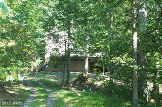 83 Walnut Grove Lane, Washington, VA 22747 (#RP8602563) :: LoCoMusings