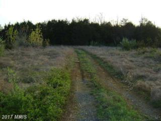 Radio Station Road, Strasburg, VA 22657 (#SH8062467) :: Pearson Smith Realty
