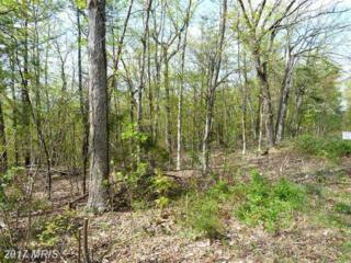 0 Supinlick Ridge Road, Mount Jackson, VA 22842 (#SH8070526) :: Pearson Smith Realty