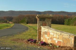 15 Camilla Court, Maurertown, VA 22644 (#SH8621401) :: Pearson Smith Realty