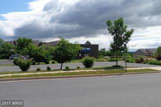 109 Oxbow Drive, Strasburg, VA 22657 (#SH9523070) :: LoCoMusings