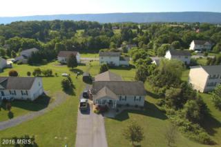 51 Pin Oak Court, Maurertown, VA 22644 (#SH9619162) :: Pearson Smith Realty
