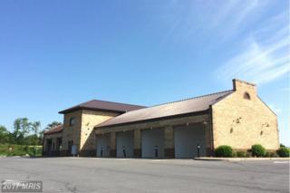 1155 Henry Ford Drive, Woodstock, VA 22664 (#SH9741999) :: LoCoMusings
