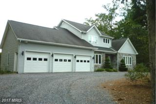 7620 Supinlick Ridge Road, Mount Jackson, VA 22842 (#SH9768379) :: Pearson Smith Realty